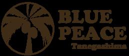 種子島 観光 BLUE PEACE | シーカヤックやダイビングなど選べる6つのアクティビティ